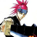 Bleach 11 (Manga)