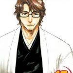 Bleach 12 (Manga)