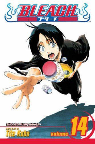 Bleach 14 (Manga)