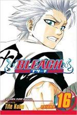 Bleach 16 (Manga)