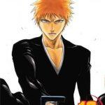 Bleach 19 (Manga)