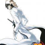 Bleach 22 (Manga)