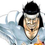 Bleach 28 (Manga)