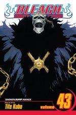 Bleach 43 (Manga)