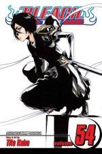 Bleach 54 (Manga)